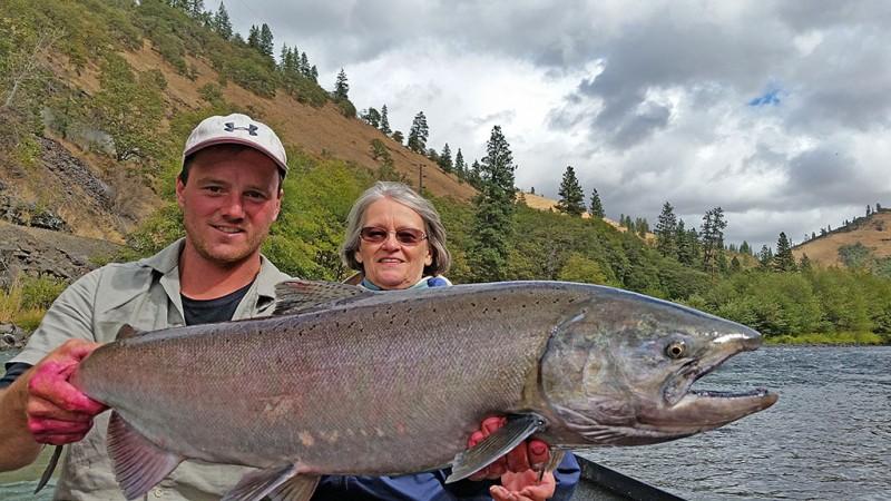 Levi-Zoller-Salmon-2015
