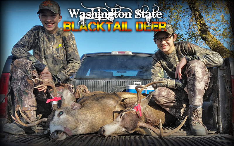 Hunt Report – Washington State Blacktail Deer